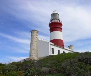 Cape Agulhas Garden Route Tour