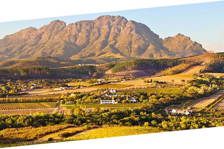 Stellenbosch wine farms - Cape town
